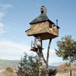 Japanese Trees Teahouses by Terunobu Fujimori