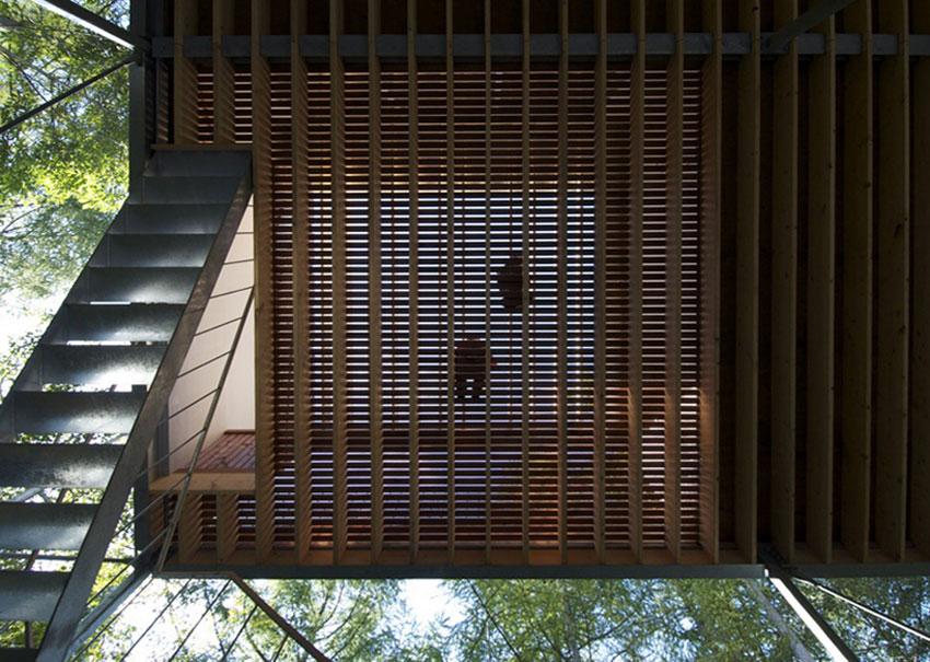 pilotis-forest-house-go-hasegawa8