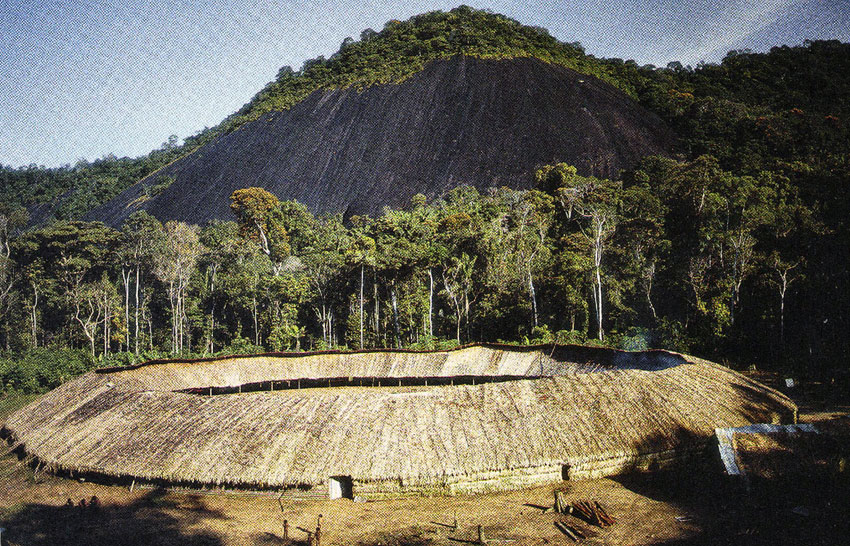 The Yanomami Tribe of the Amazon Rainforests