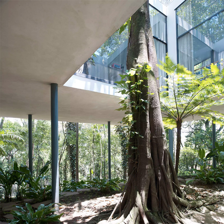 Glass House / Lina Bo Bardi